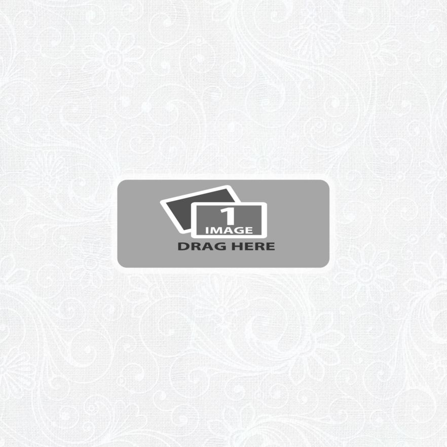 vjs-whiteice-template-00b.png