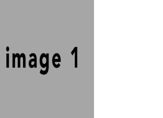 CleanLandscape_43_pages #1 #1