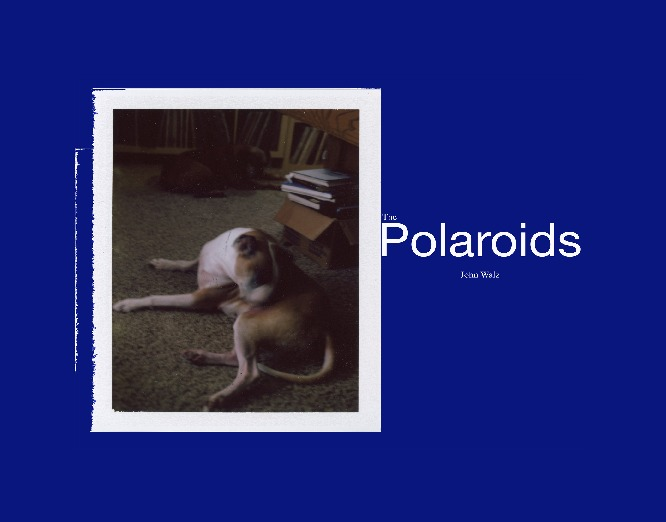 Polaroids Photo Book