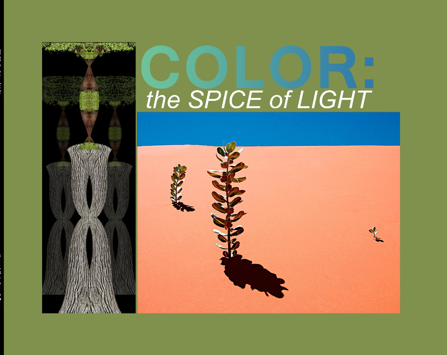COLOR: the Spice of Light