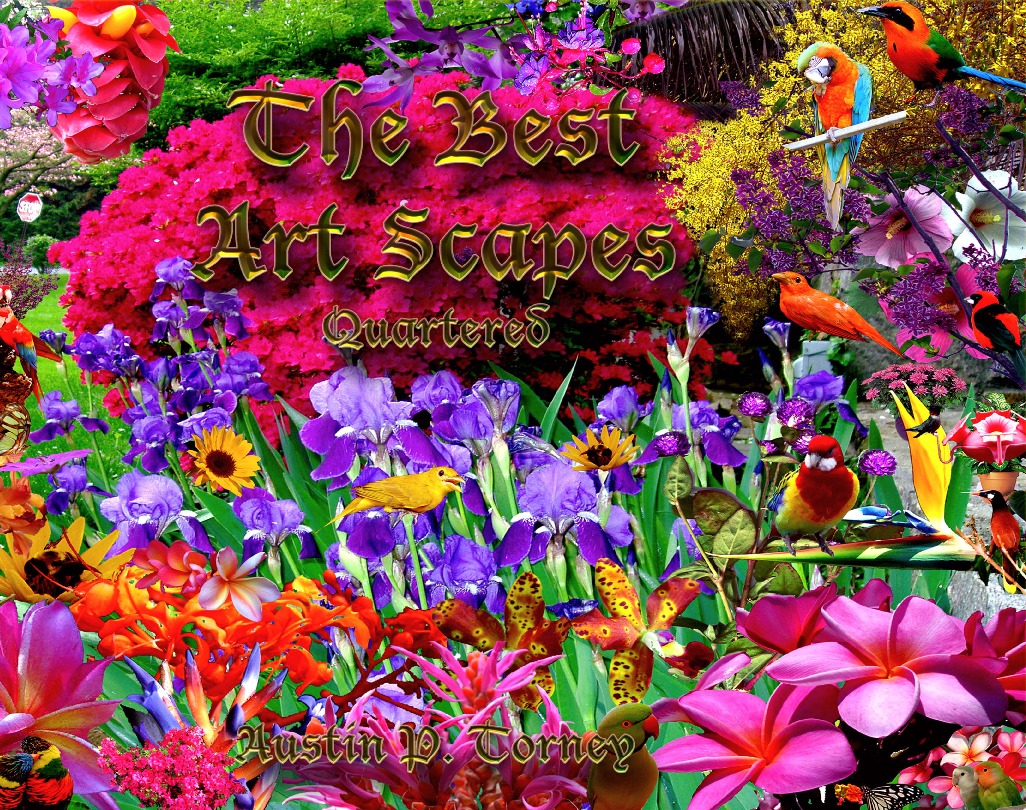 The Best Art Scapes Quartered