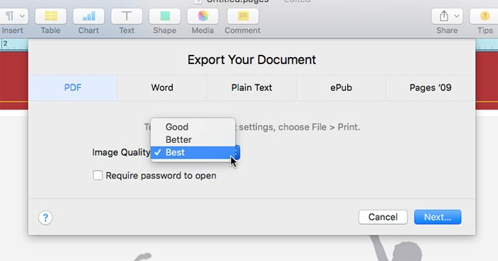 Export project to PDF