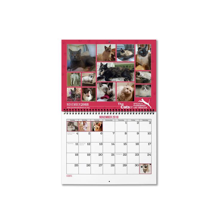 "11""x8.5"" Wire-O Calendar, Semi-Gloss 300 Photo Paper"