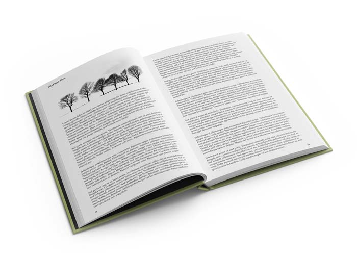 Example of a Text-only book with a Graphic