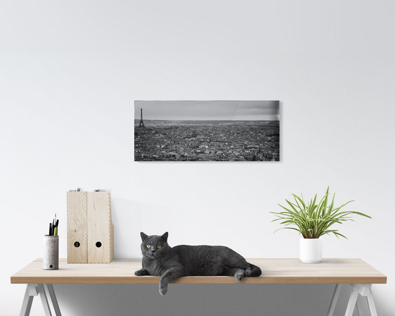 10x24 Panoramic Acrylic Prints