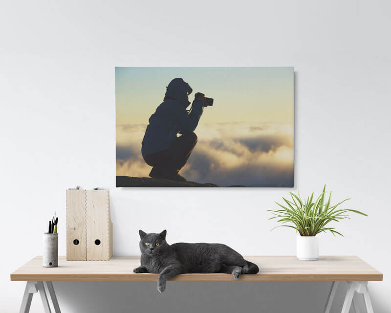 20x30 Canvas Prints