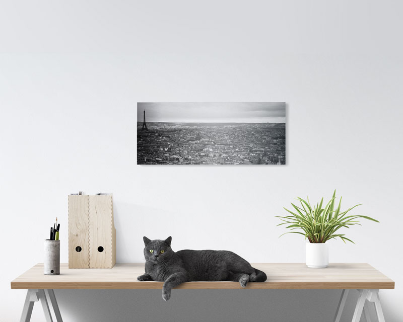 10x24 panoramic metal prints prestophoto
