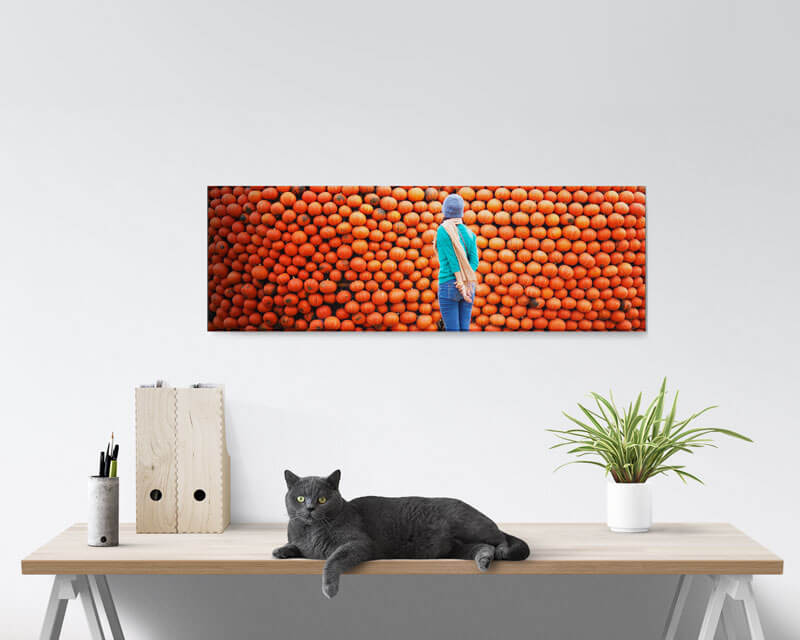 12x36 Panoramic Acrylic Prints
