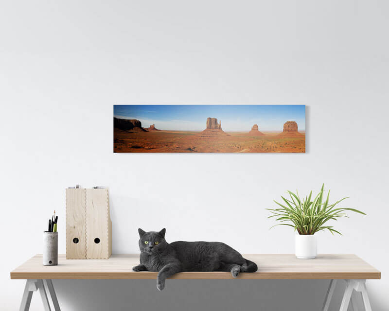8x32 Panoramic Metal Prints